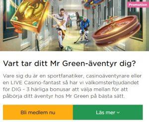Börja spela live casino på Mr Green nu!